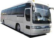 Автобусы    Киа ,   Дэу ,   Хундай,  Hyunda,  Kia,  Daewoo