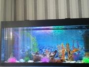 Продам аквариум на 280 литров